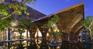 3 quán cà phê Việt được vinh danh thế giới