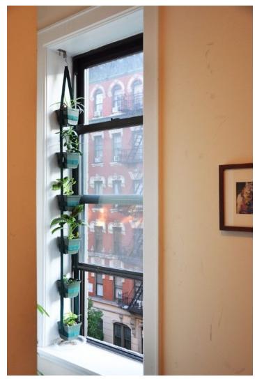 Những ý tưởng sáng tạo trang trí khu cửa sổ - Ảnh 05