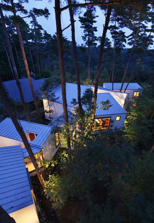 Không gian xanh ôm trọn thiết kế nhà đẹp. Ảnh 07