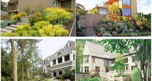 Ý tưởng thiết kế nhà vườn trên địa hình cao.7