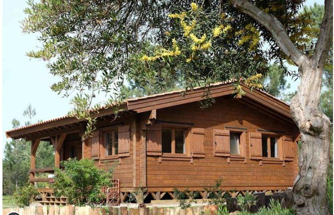 Nhà vườn đơn giản với nội thất cực chất 78m2. 2