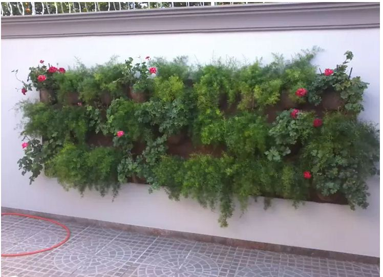 trang trí sân vườn tiểu cảnh cho nhà đẹp mê ly. 3