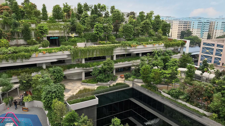 Kiến trúc xanh giải pháp hiệu quả cho đô thị hiện đại 1