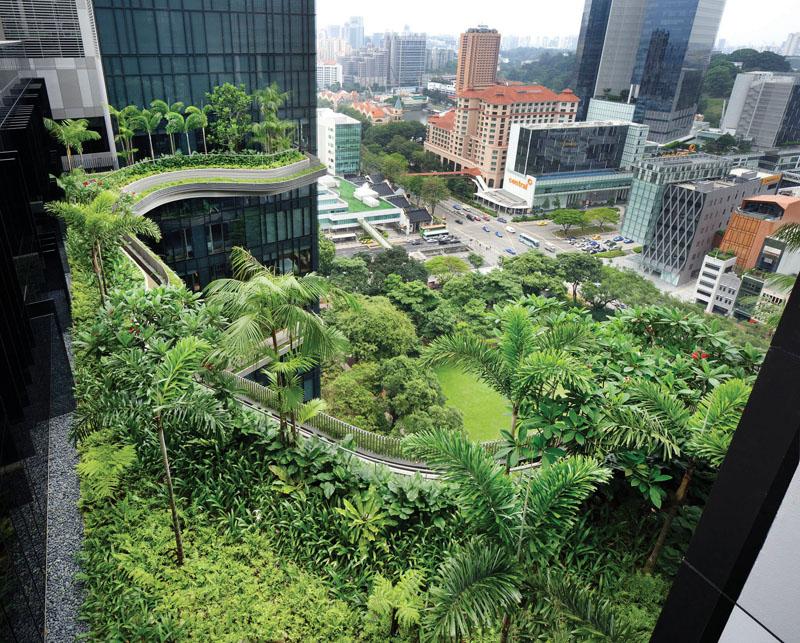 Tiêu chí kiến trúc xanh trong xây dựng nhà ở 2