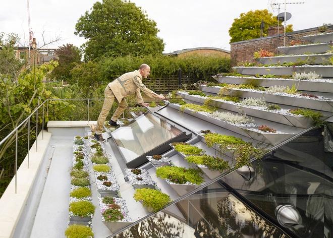 Tiêu chí kiến trúc xanh trong xây dựng nhà ở 6