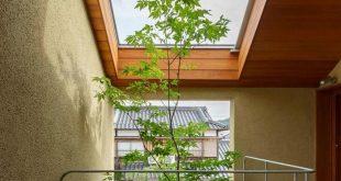Giếng trời tạo kiến trúc xanh trong thiết kế nhà phố
