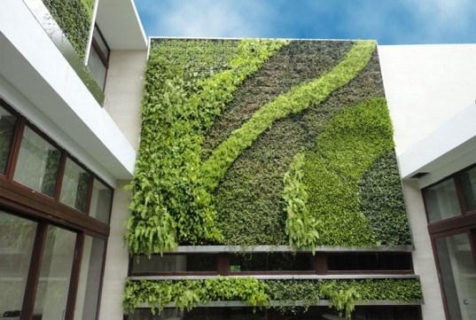 Cây cối có thể là một loại vật liệu tạo nên kiến trúc xanh trong thiết kế nhà phố