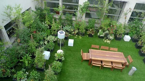 Thiết kế vườn sân thượng đẹp - 1