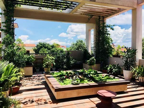 Thiết kế vườn sân thượng đẹp - 2